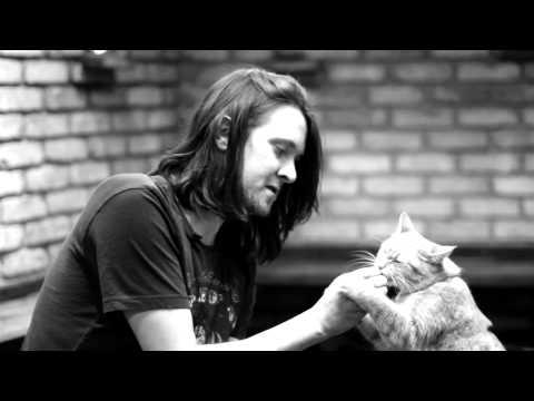 Bob:街頭小貓咪