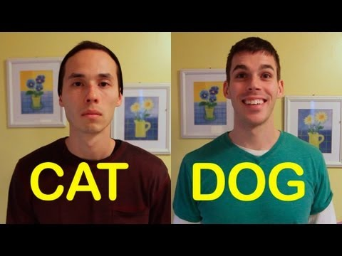 「貓朋狗友」- Cat-Friend vs Dog-Friend
