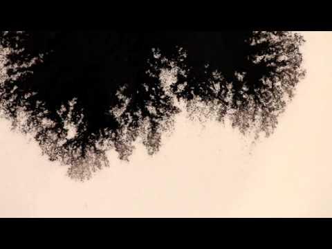 國際水之日:水影畫