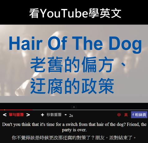 「老舊的偏方、迂腐的政策」- Hair Of The Dog
