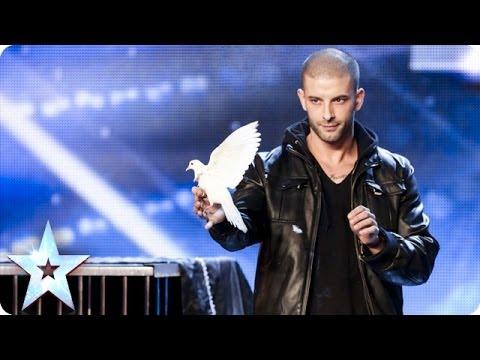 《英國達人秀》不可思議的鴿子魔術
