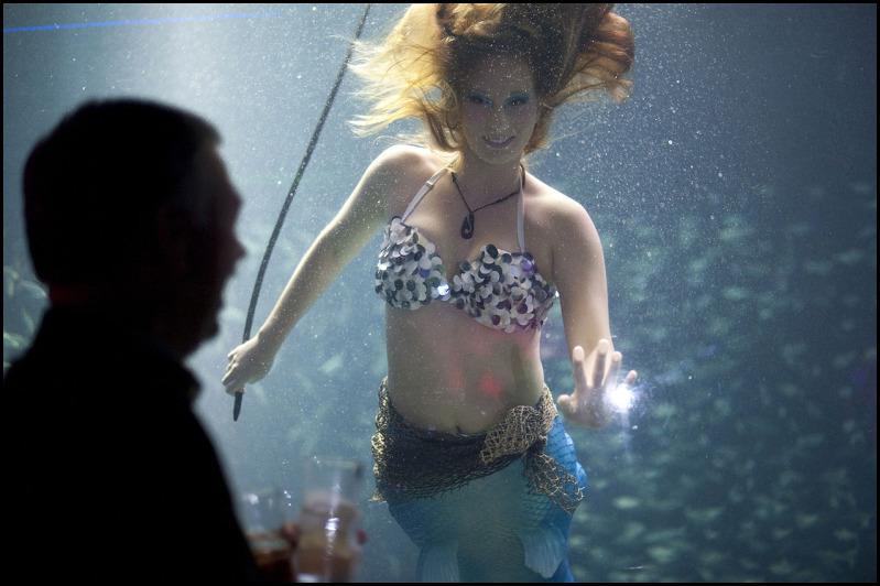 美人魚英文怎麼說?美夢成真!變身人魚的女孩悠游大海