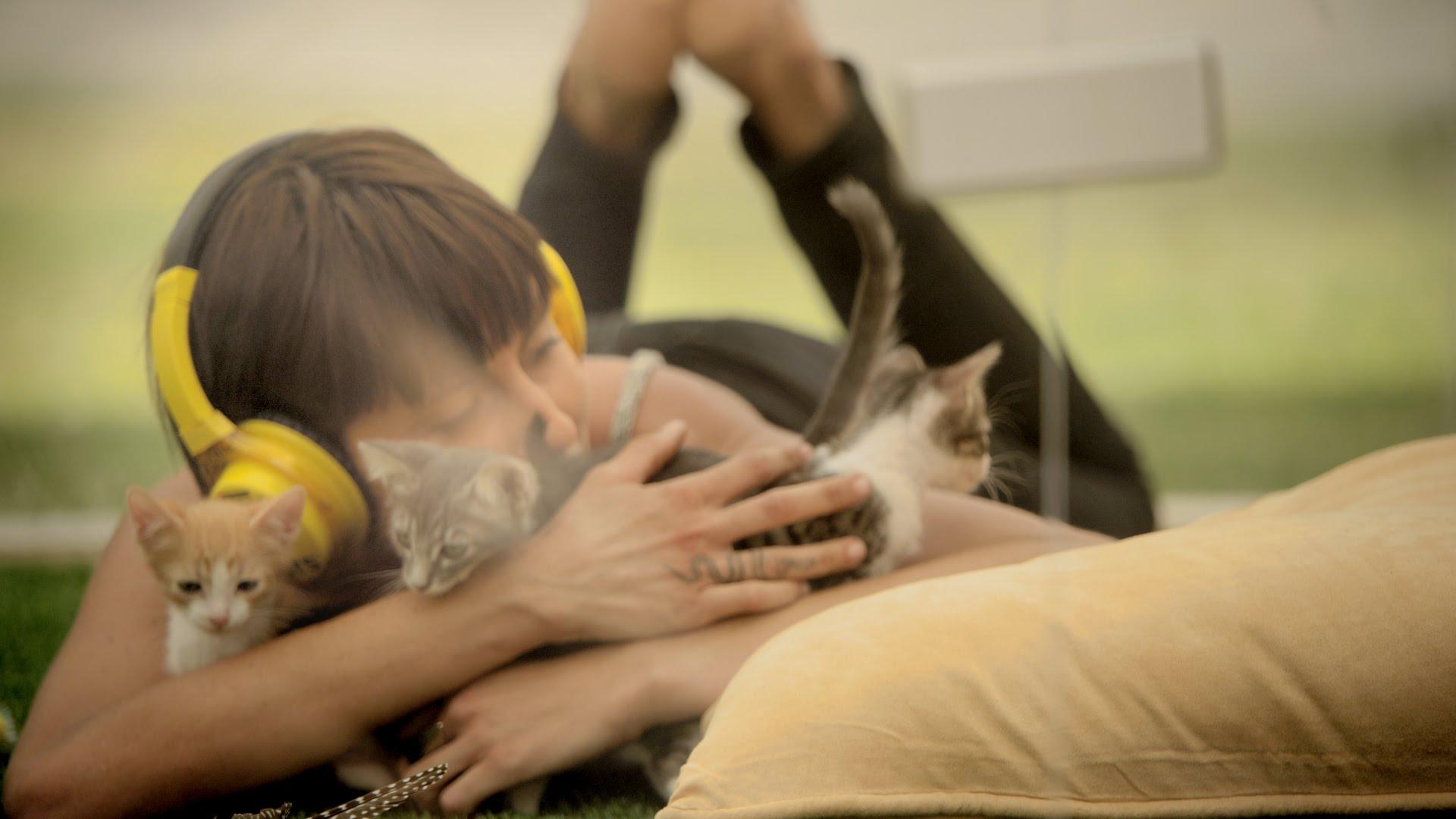 壓力大嗎?試試貓咪紓壓法
