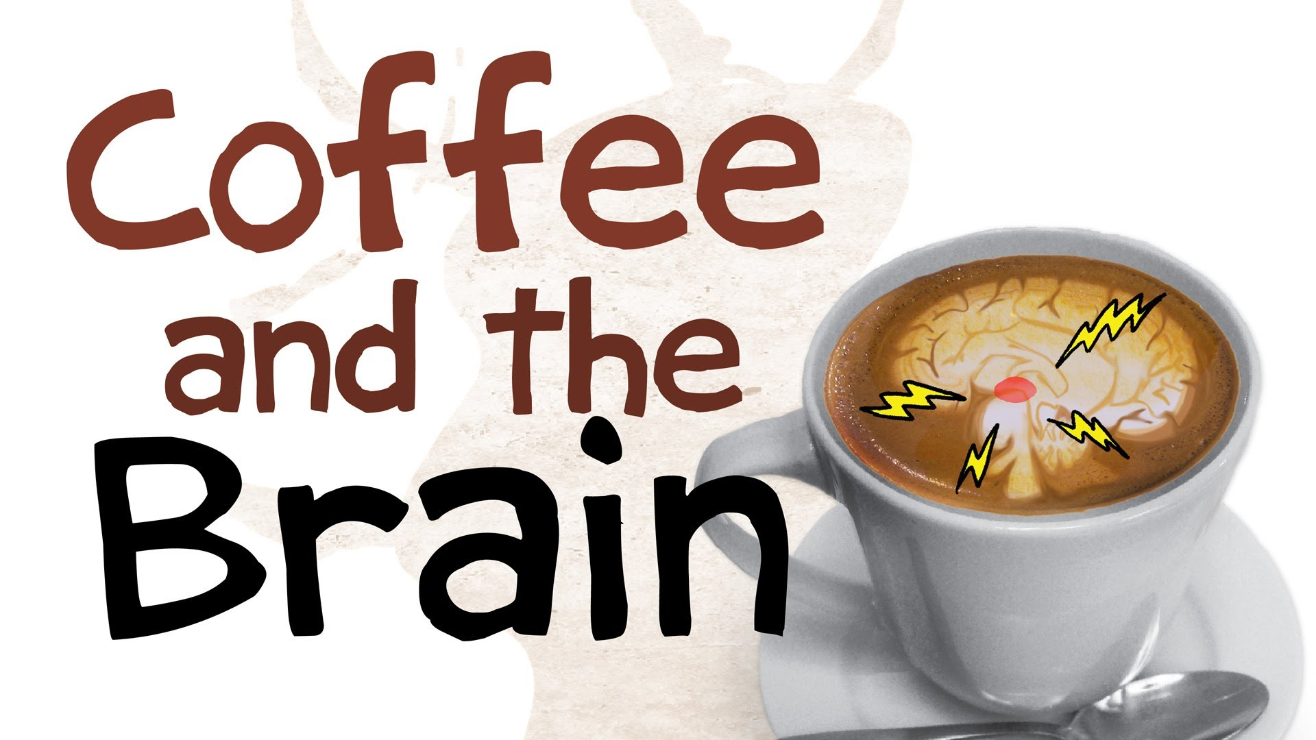 「咖啡如何影響你的腦袋」- How Coffee Affects Your Brain