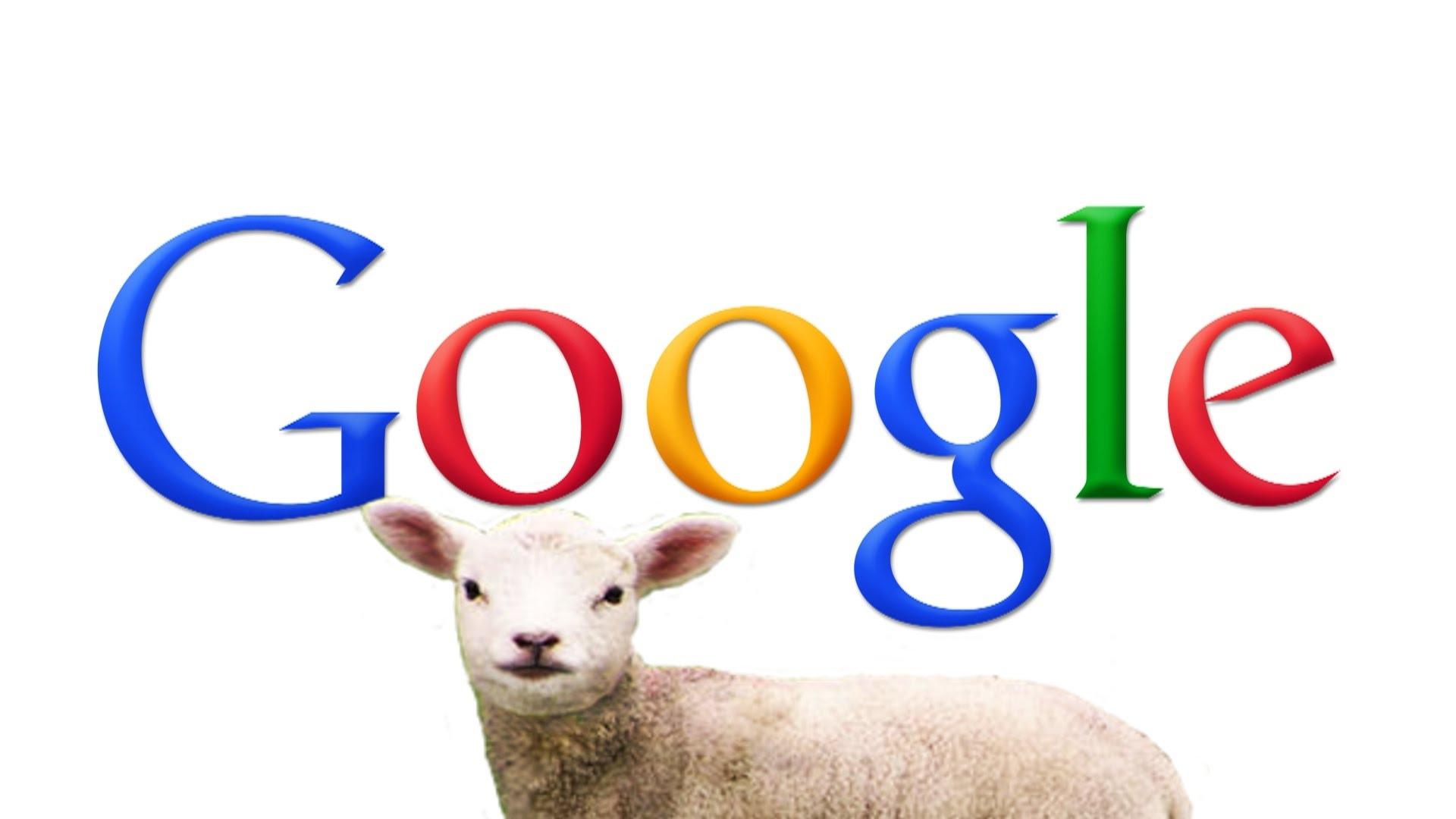 關於 Google,你可能不知道的十件事