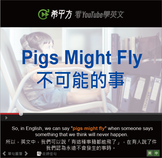 「不可能的事」- Pigs Might Fly