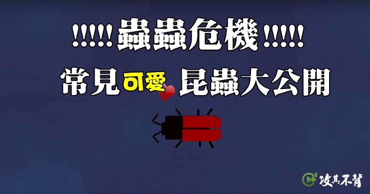 昆蟲英文大集合!