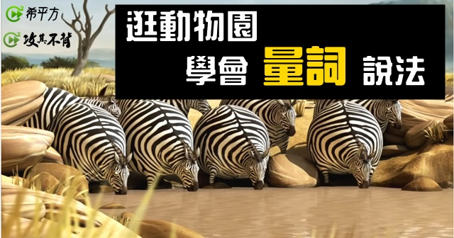 動物大集合!『一群』動物除了『a group of』還能怎麼說?