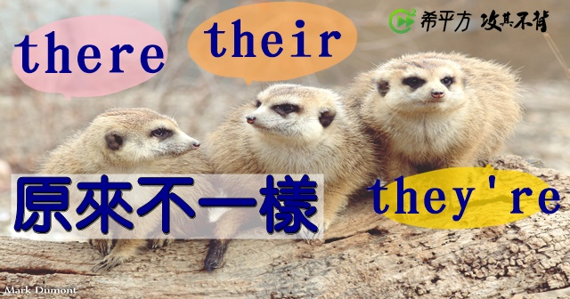 there」、their」、they're」長很像卻完全不一樣,用法差在哪?!