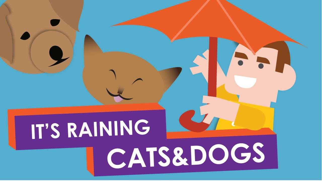 「下大雨哪來的貓貓狗狗?!慣用語『It's raining cats and dogs!』的由來」- Why Do We Say: It's Raining Cats and Dogs?