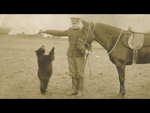 「鮮為人知的歷史!《小熊維尼》的故事起源 」- The Story behind Winnie the Pooh