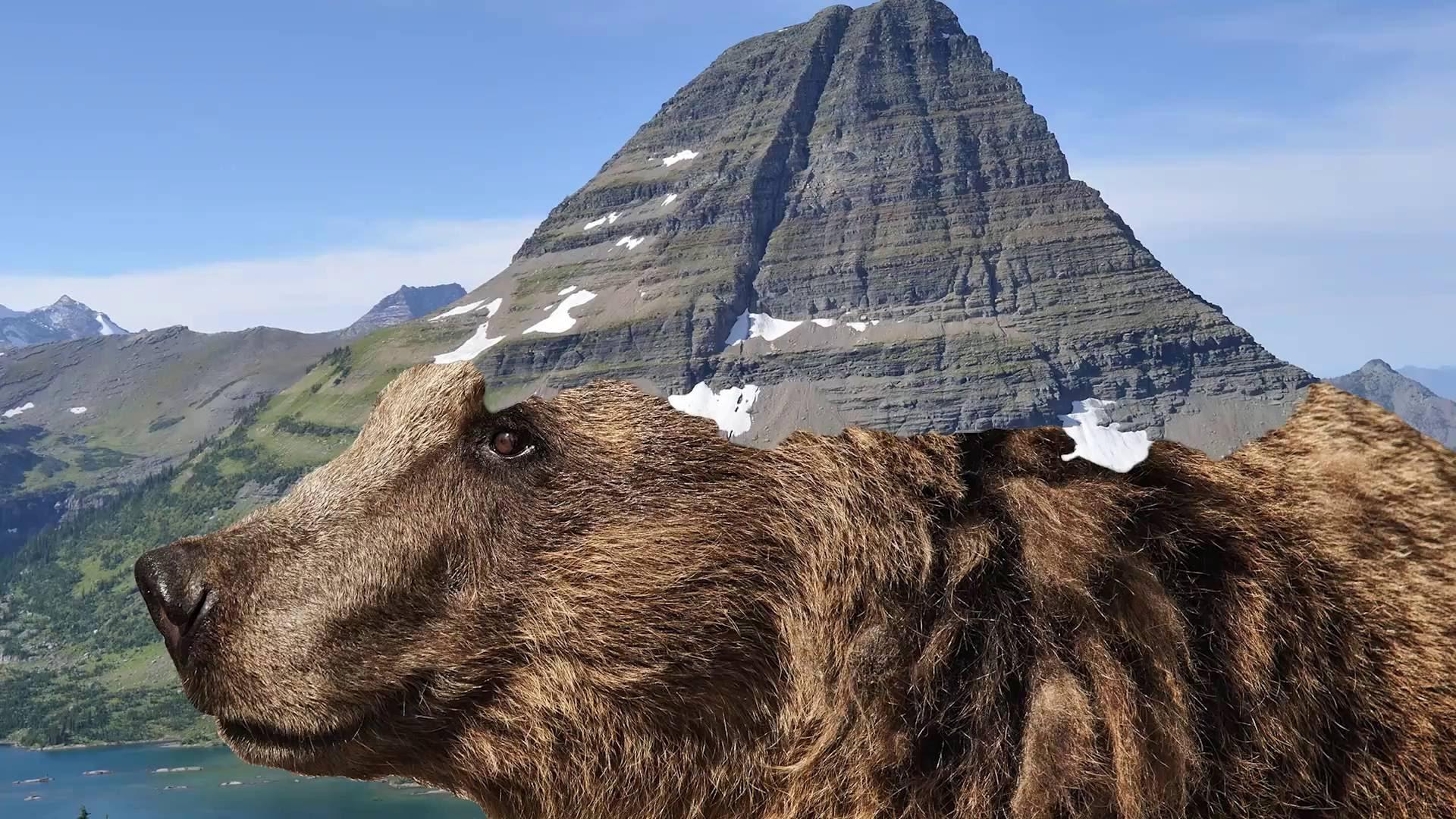 「絕美景致!三分鐘帶你遊覽壯闊的美國國家公園」- One-Day Guide to US National Parks