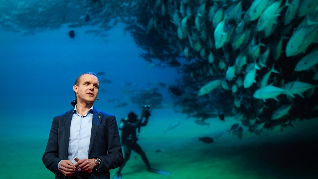 「Enric Sala:將公海變成世界上最大的自然保護區」- Let's Turn the High Seas into the World's Largest Nature Reserve