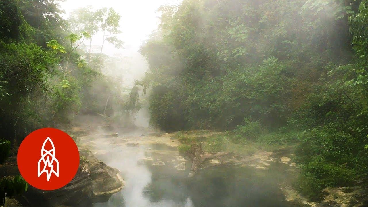 深入亞馬遜:叢林裡的沸騰之河