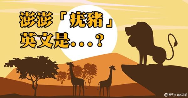 動物大觀園--非洲大草原上的動物英文名稱,你都會了嗎?