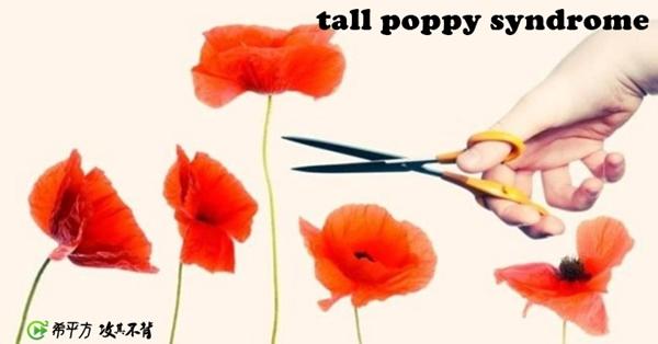 【紐澳小學堂】紐澳特有的現象 tall poppy syndrome 是什麼?