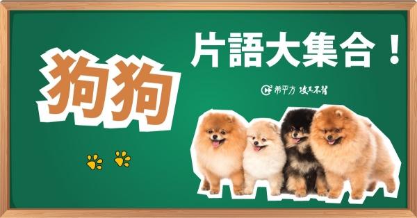 【趣味英文】『累得跟狗一樣』英文怎麼說?來學學跟『狗』有關的片語!
